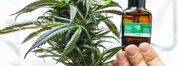 Medical Cannabis Billing